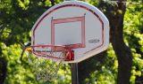 federacion-andaluza-de-baloncesto-malaga